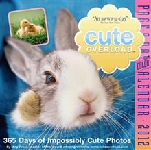 CUTE OVERLOAD 2012. (Calendar/Page A Day)