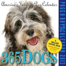 365 DOGS 2013. (Calendar/Page A Day)