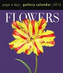 FLOWERS GALLERY 2013. (Calendar/Page A Day)