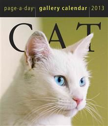 CAT GALLERY 2013. (Calendar/Page A Day)
