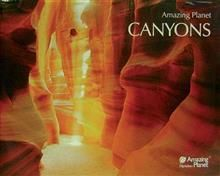 CANYONS: Posters