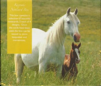HORSES: 20 notecards with envelopes.