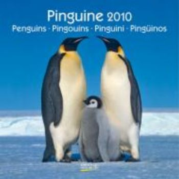 PENGUINS 2010. /стенен календар: 30 х 30 см./