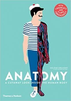 ANATOMY: A Cutaway Look Inside the Human Body