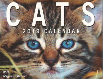 CATS MINI DAY-TO-DAY CALENDAR 2019