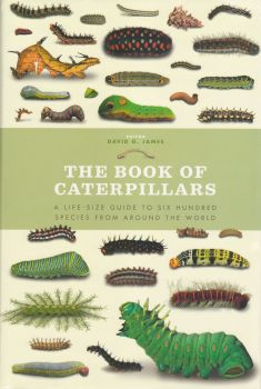 THE BOOK OF CATERPILLARS