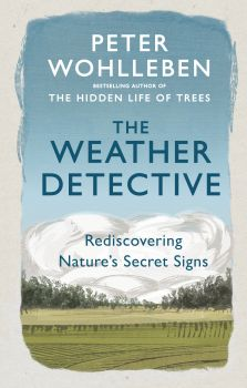 THE WEATHER DETECTIVE: Rediscovering Nature`s Secret Signs